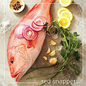 Red Snapper, my favorite fish!