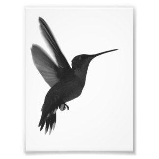 Schwarz Weiß Fotografie, Schwarz Weiß Foto-Drucke, Schwarz Weiß Bilder