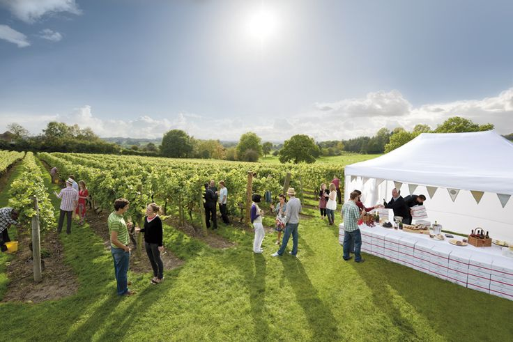 Not only is this England's leading wine producer but also one of the UK's most exciting drinks companies. And its stunning herb garden and vineyard walks make a perfect backdrop for romantic strolls with your loved one…