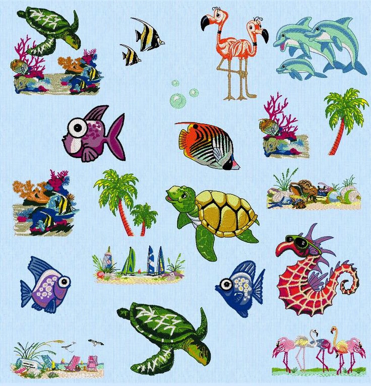 20 Designs, Tropical Waters, Amazing Designs Embroidery