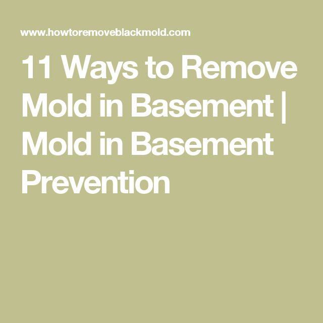 11 Ways to Remove Mold in Basement | Mold in Basement Prevention
