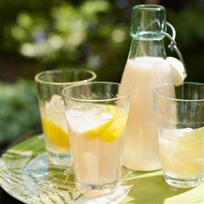 Homemade Lemonade - Picnic food
