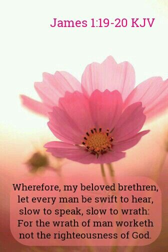 321 best Bible Verses 2 images on Pinterest | Bible scriptures ...