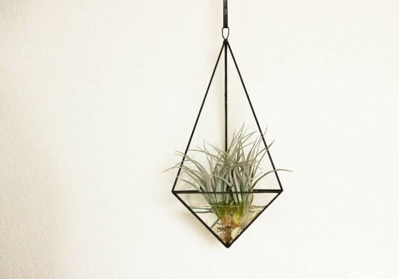 Geometric hanging terrarium /  modern indoor planter
