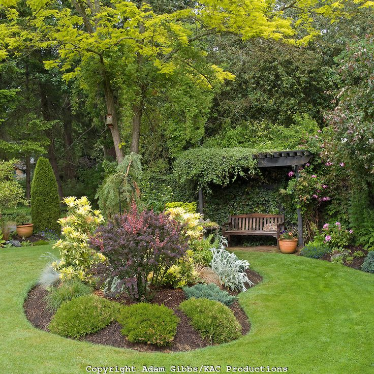 Flower bed designs kidney shaped flower bed leads the for Backyard flower bed ideas