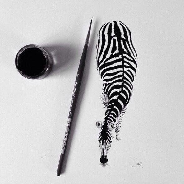zebra drawing drawings cool simple creative precise ink