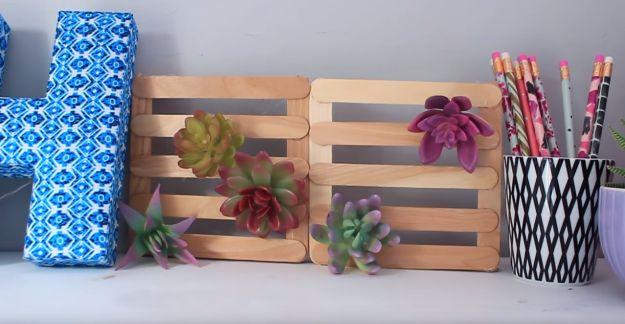 Cool dorm decoration alert: Use ice-pop sticks to display fake succulents in impressive fashion.
