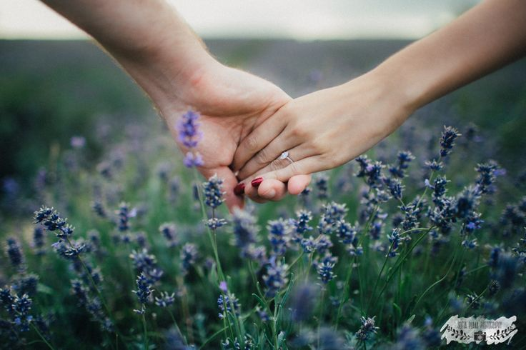 mayfield lavender engagement session london wedding photography