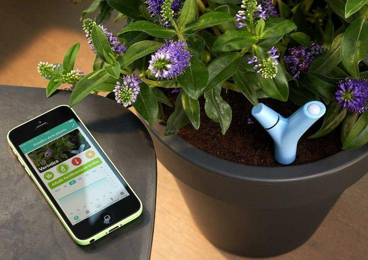 Parrot Flower Power | Smuff — Magazinul de traznai