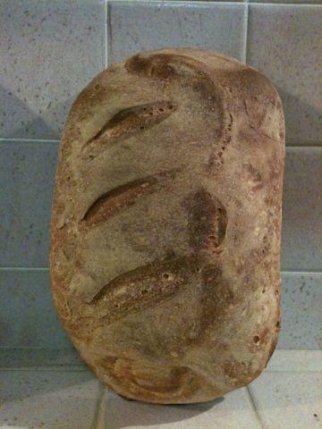 Pane a lievitazione naturale con tecnica dell'autolisi by guadalupe - Pagina 1