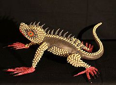 Lizard Оахака Мексика