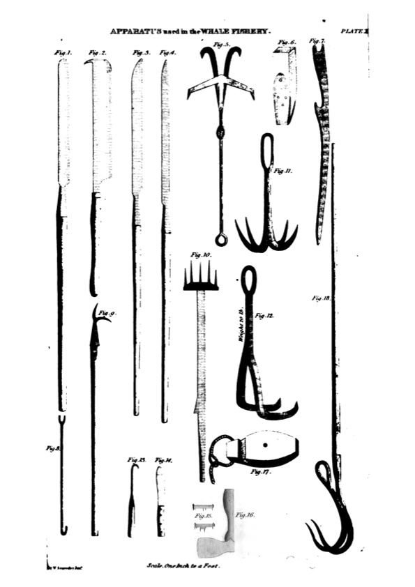 Apparatus used in the Whaling Fishery