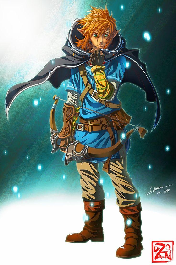 Dzoan's blog: The Legend of Zelda - Link Wii U Version