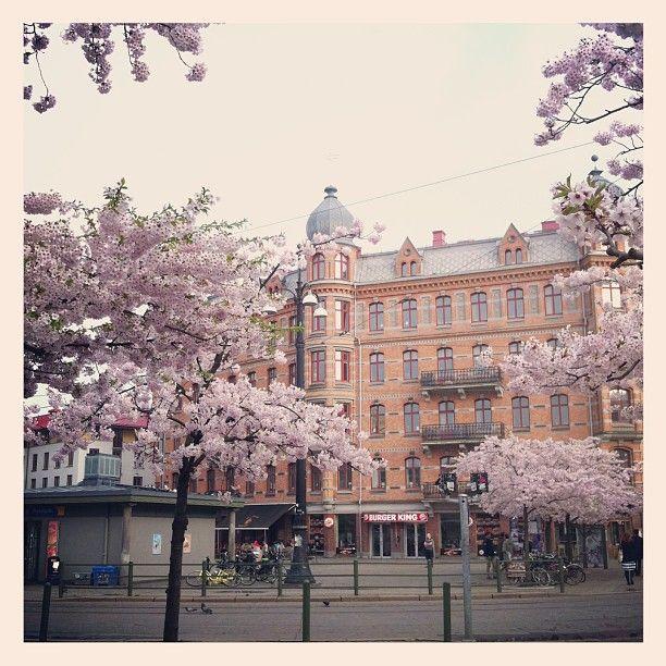 So Gothenburg