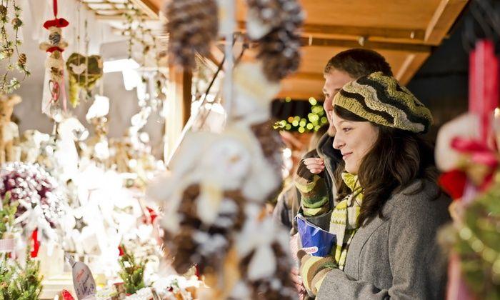 Slangen Reizen - Amsterdam - Station Holendrecht: Dagtrip naar de kerstmarkt in Düsseldorf inclusief busvervoer (retour) en de middag vrije tijd