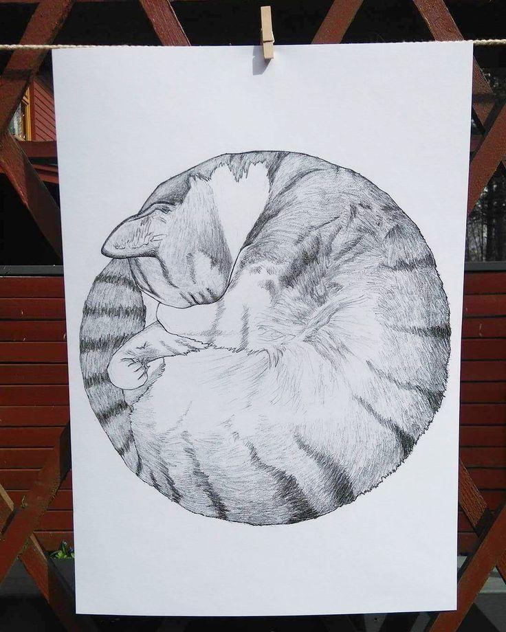Catbun - juliste / poster A3 (30x42cm) - Norteva