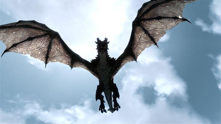 Dragons do exist