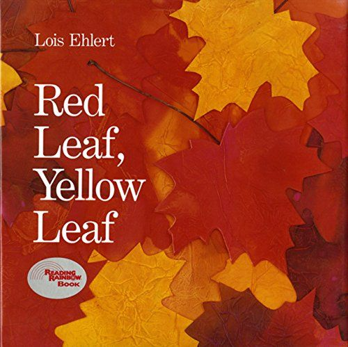 Replacement Red Leaf, Yellow Leaf by Lois Ehlert https://www.amazon.ca/dp/0152661972/ref=cm_sw_r_pi_dp_x_eNkUzbQ9D58F3