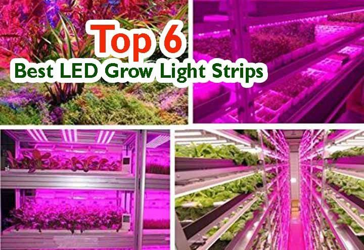 6 Best Led Grow Light Strips In 2019 Reviews And Top Pick In 2020 Led Grow Lights Grow Lights Best Led Grow Lights