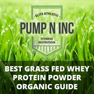 Looking for the Best Grass Fed Whey Protein Powder? Follow our Organic Supplements Guide and Find the Best One based on Price, Quality and Taste!