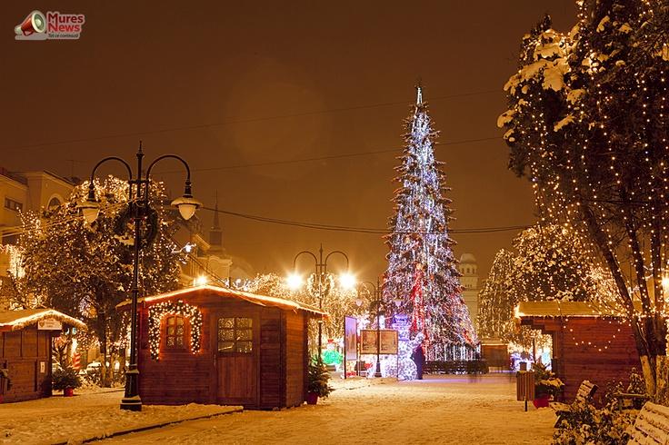 Targu Mures, Decembrie 2012