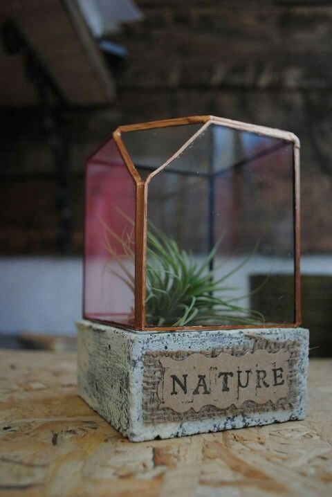 Super mini τσιμεντάκι nature www.airplants.gr #airplantsgr #cube #ionantha #nature_style #style #home #garden #luxury_desktop #greekdesign #handmade #greece #athens