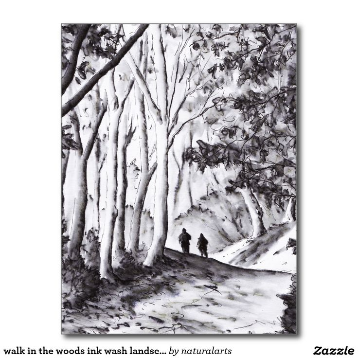 walk in the woods ink wash landscape drawing postcard