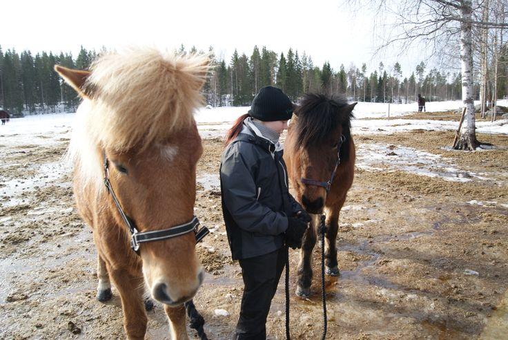 Purola Farm http://www.purolafarm.fi/  http://www.facebook.com/MatkaMaalle http://www.keskisuomi.net/ http://www.centralfinland.net/