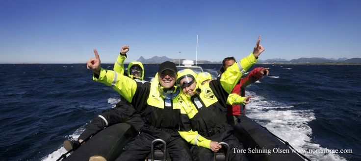 Lofoten Diving