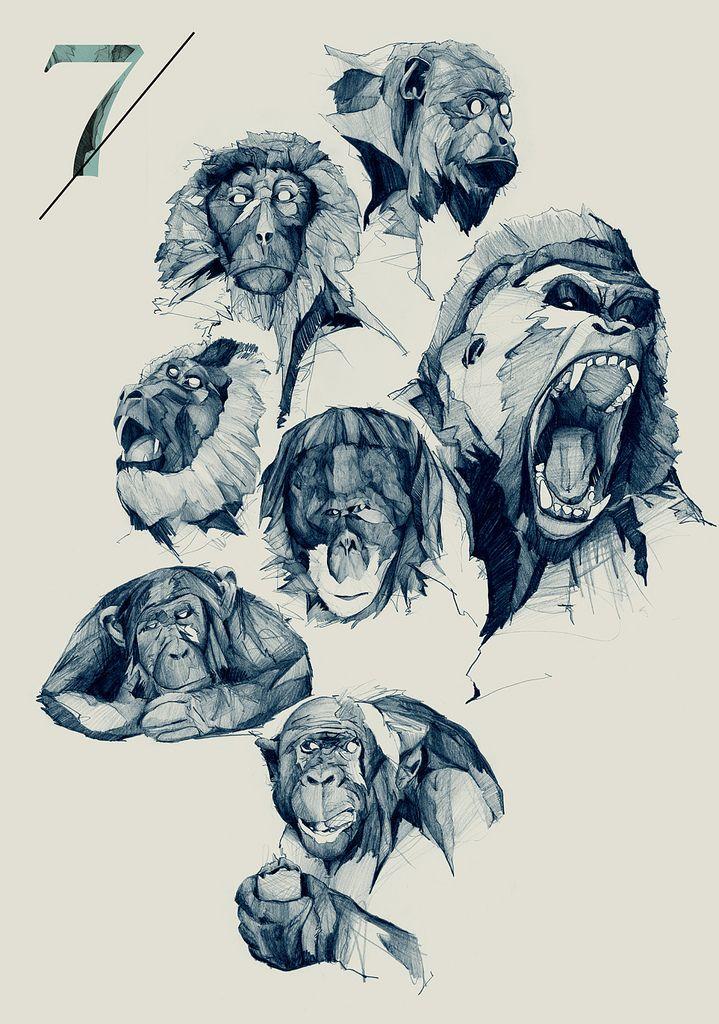 Monkeys: Awesome hand drawn monkeys.