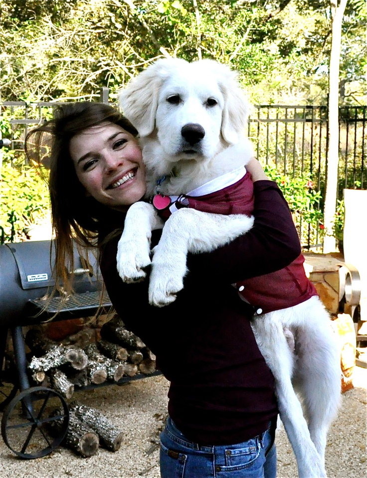 5 month old Great Pyrenees puppy, Gus!