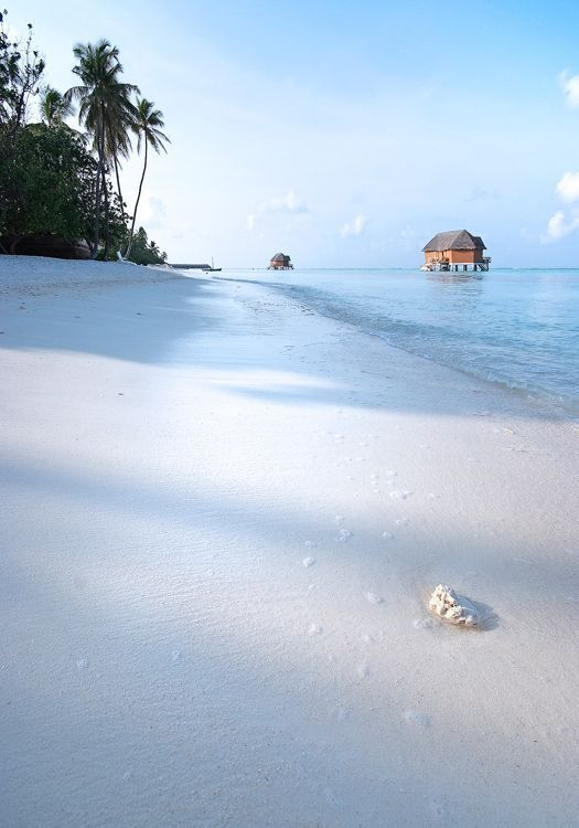 Maldives - sand is so white it looks like snow