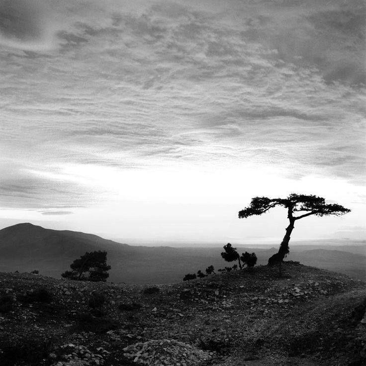 Ηλιοβασίλεμα στην Πεντέλη το 1952.φωτ.Νικόλαος Τομπάζης.