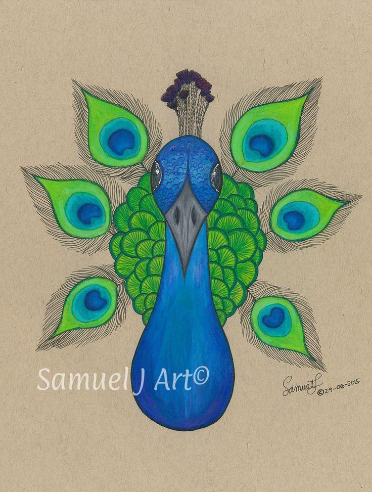 'Mini Peacock'