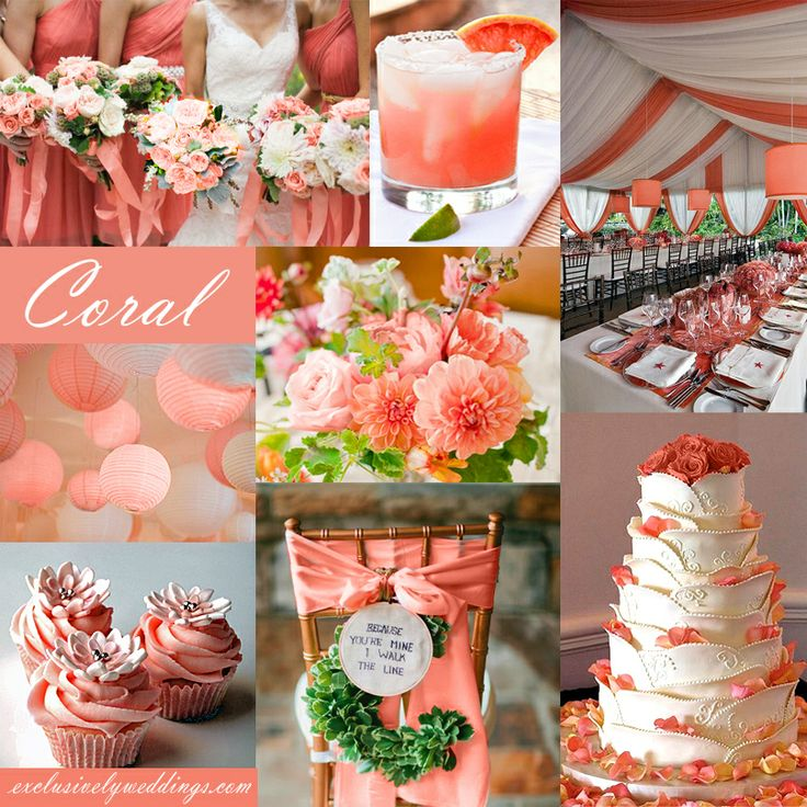 182 best Coral & Peach Wedding images on Pinterest | Color scheme ...