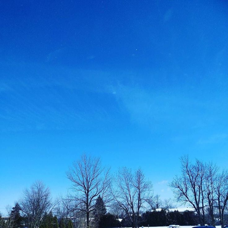 A blue sky today!! Will be a warm temp over the weekend too!! #canada #quebec #montreal #laval #brossard #french #japanese #weather #bluesky #warm #winter #nature