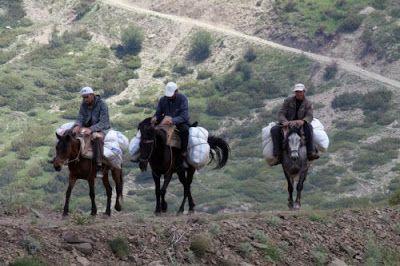 Παράνομη συλλογή βοτάνων στην Ελληνοαλαβανική μεθόριο http://ift.tt/2thiS4J