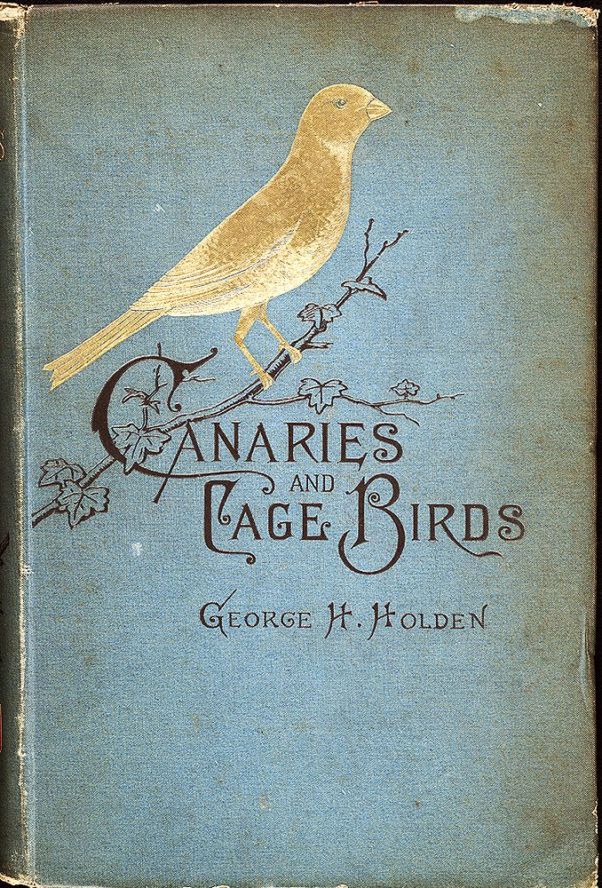 Antique book ~ Canaries and Cage Birds  like the idea of the writing being part of the newfield nest ...
