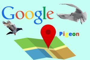 A Google Pigeon algoritmusa segít a közeli vállalkozások megtalálásában.