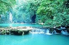THAN BOK KHORANI National Park, Ao Luek, 45 km from Krabi town. The park covers an area of 1211 km2 consisting of mangrove forests, limestone mountains and islands. Major attractions: 1) Than Bokkhorani pond, with a replica of the Buddha's footprint and a shrine nearby 2) Tham Lot & Tham Phi Hua To, two caves with prehistoric paintings and stalactite formations. Come here early (7am) and you will be able to hire the guide/boat at a big discount.3) Tham Phet (Diamond) Cave 4) Hong islands