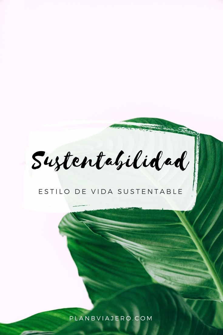 51 Best Estilo de vida eco-friendly images in 2020 Thoughts And Feelings, Zero Waste, Sustainable Fashion, Self Love, Sustainability, Planets, Coaching, Eco Friendly, Environment