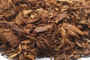 Shredded Mimosa Hostilis Root Bark