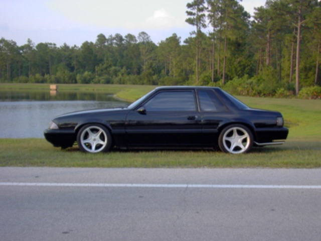 fox body cars and motorcycles pinterest foxes bodies and fox body mustang. Black Bedroom Furniture Sets. Home Design Ideas