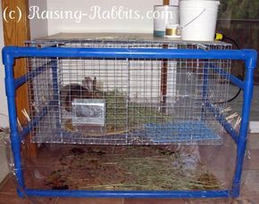 indoor rabbit cage with blue PVC indoor hutch frame