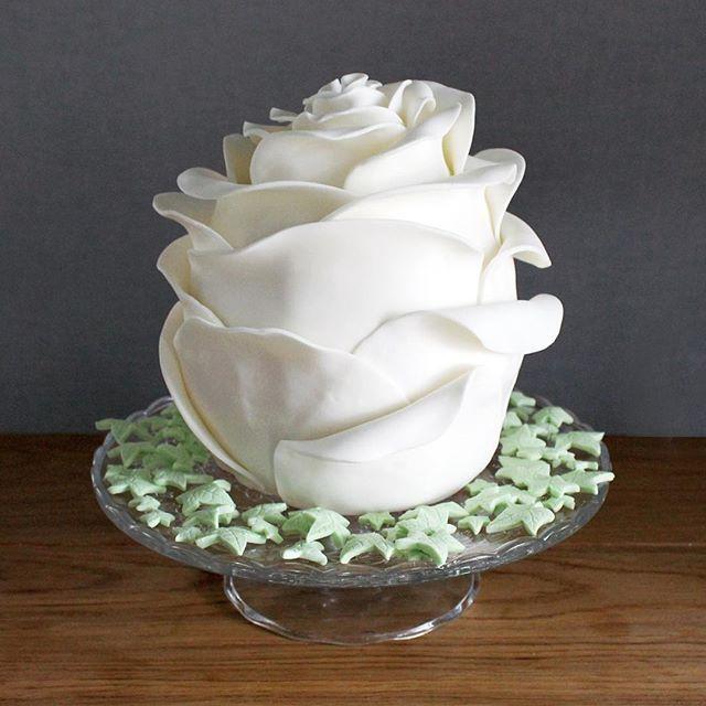 Te mooi om op te eten bestaat niet! Deze witte zoete roos heeft de buikjes van achttien snoeperds gevuld! En ohja, hij is ombre roze van binnen... Too pretty to eat doesn't exist! This white sweet rose filled the appetite of eighteen sweet teeth! And between you and me, the inside is ombre pink... #pixelsenkruimels #witteroos #taart #roostaart #whiterose #roze #pink #ombrepink #vanilla #strawberries #rosecake #cake