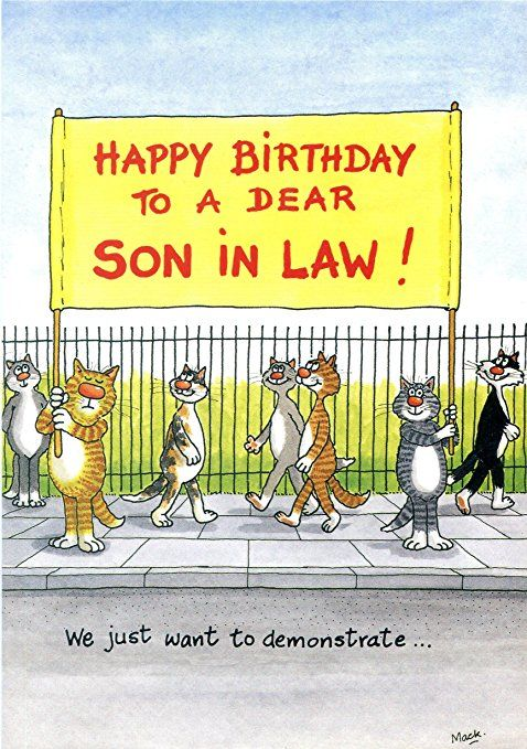 Birthday Card Happy To A Dear Son In Law We Just