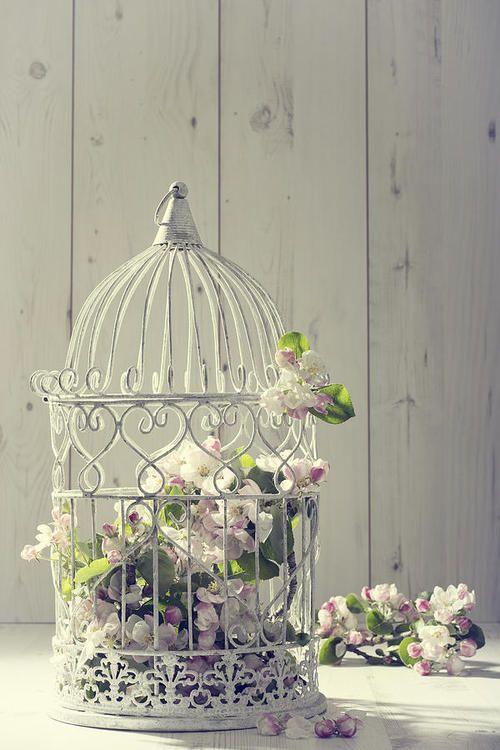 Birdcages make lovely centerpieces. ~ #wedding #Centerpiece