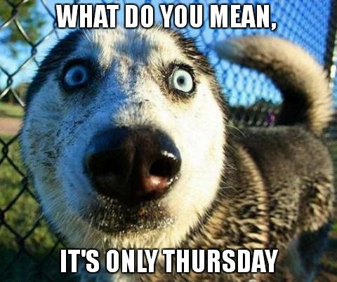 What do you mean, It's only Thursday!