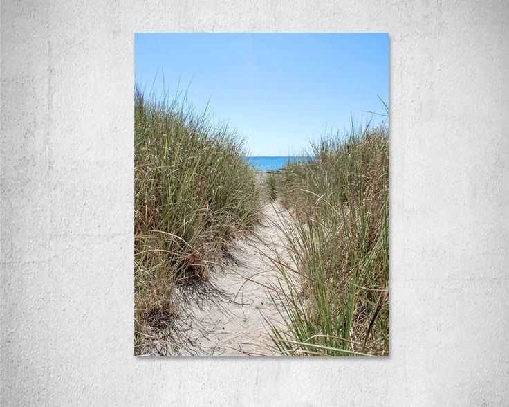 Beach Path print Coastal Wall Art Print Beach Dune Grass Nature photography Beach house Neutral Decor Summer decor Fine Art Photo Print by LightBluePhotography on Etsy