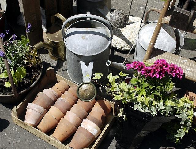 1000+ Ideas About Gartenarbeit Im März On Pinterest | Irvine ... Garten Januar Was Ziergarten Tun
